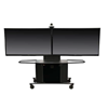 Package L - Audio Visual Furniture International - Metal Monitor Cart and Dual Monitor Mount for 42